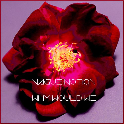 Why Would We by Vague Notion