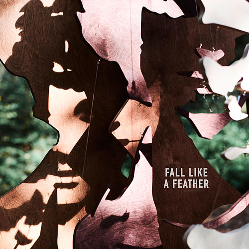 Fall Like a Feather by Dan Owen