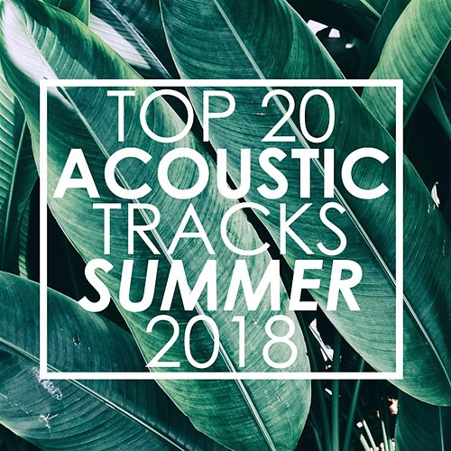 Top 20 Acoustic Tracks Summer 2018 de Guitar Tribute Players