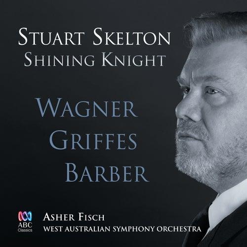 Shining Knight de Stuart Skelton