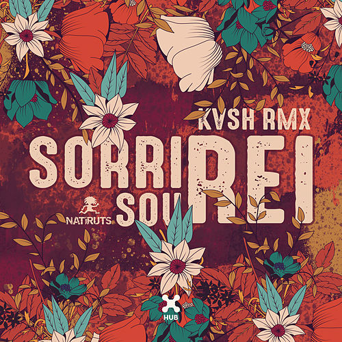 Sorri, Sou Rei (KVSH Remix) (Radio Edit) de Kvsh