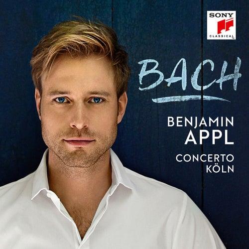 Höchsterwünschtes Freudenfest, BWV 194: III. Was des Höchsten Glanz erfüllt de Benjamin Appl