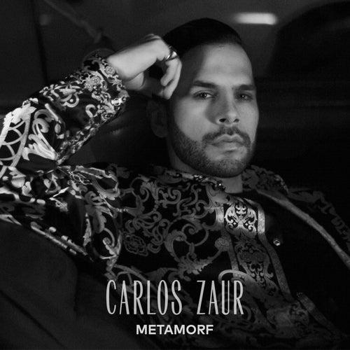 Metamorf de Carlos Zaur