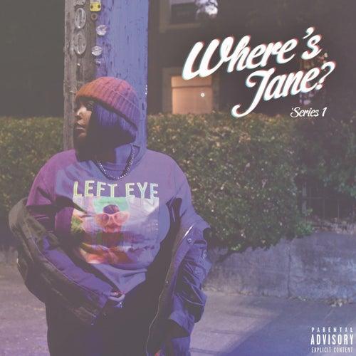 Where's Jane? Series 1 von JANE HANDCOCK
