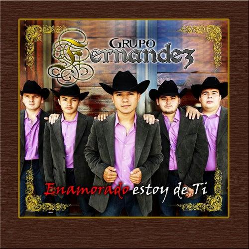 Enamorado Estoy de Ti by Grupo Fernandez