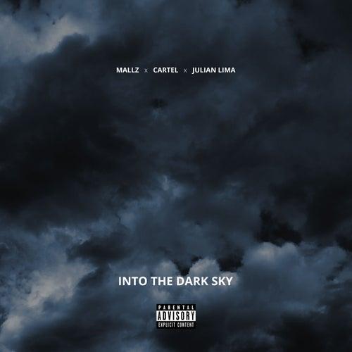 Into The Dark Sky by Mallz