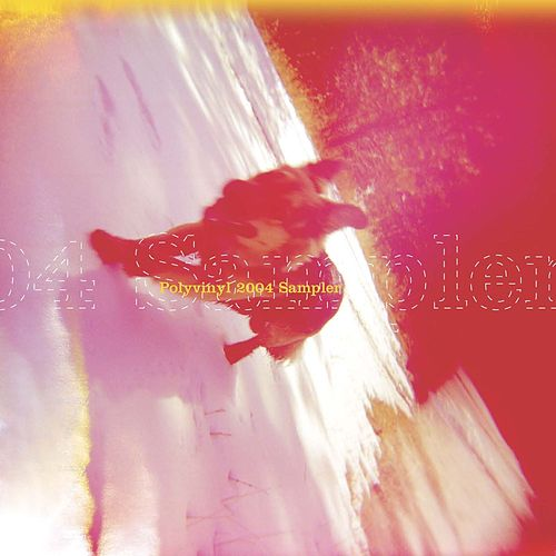 Polyvinyl 2004 Sampler by Various Artists