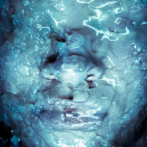 Chrysalis by Shaun Ross
