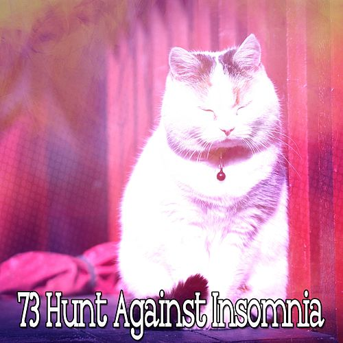73 Hunt Against Insomnia von Best Relaxing SPA Music