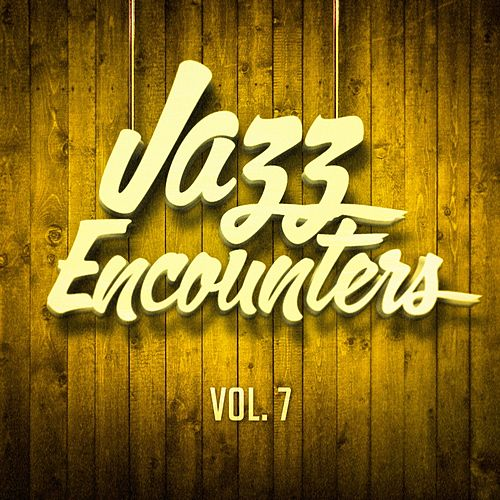 Jazz Encounters: The Finest Jazz You Might Have Never Heard, Vol. 7 von Various Artists