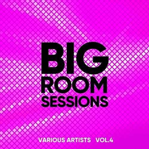 Big Room Sessions, Vol. 4 de Various Artists