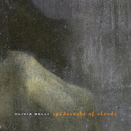 Spiderwebs of Clouds di Olivia Belli