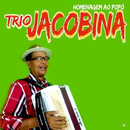 Homenagem Ao Popó by Trio Jacobina