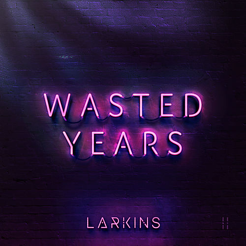 Wasted Years by The Larkins
