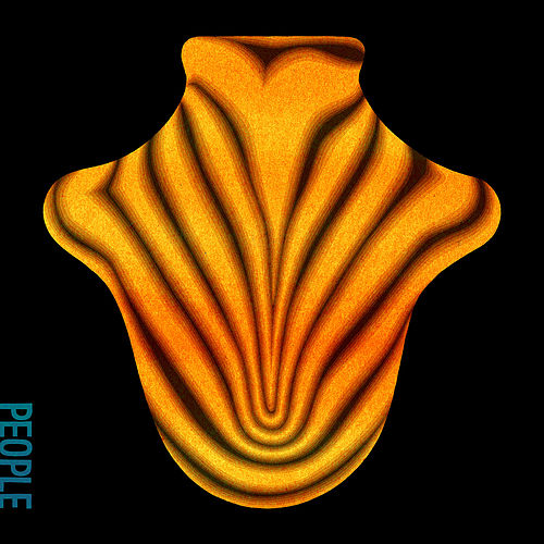 I Won't Run From It by Big Red Machine