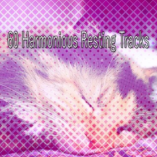 60 Harmonious Resting Tracks von Best Relaxing SPA Music