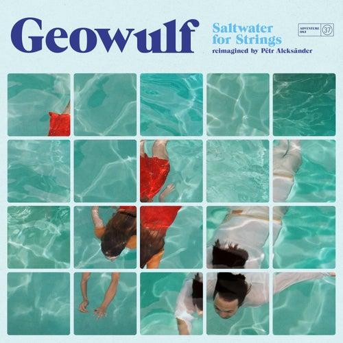 Saltwater for Strings ((reimagined by Pêtr Aleksänder)) by Geowulf