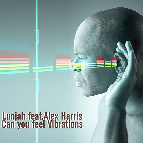 Can You Feel Vibrations von Lunjha