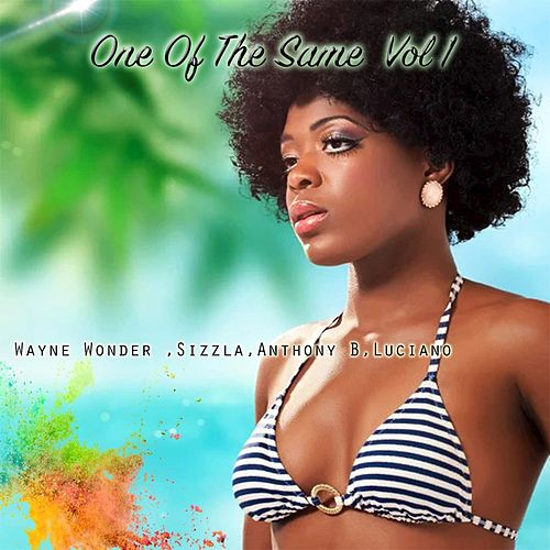 One Of The Same  Vol. 1 by Various Artists