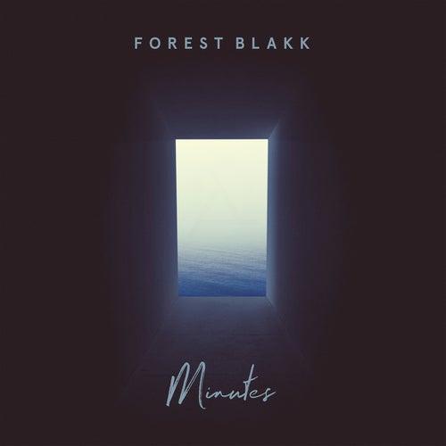 Minutes von Forest Blakk