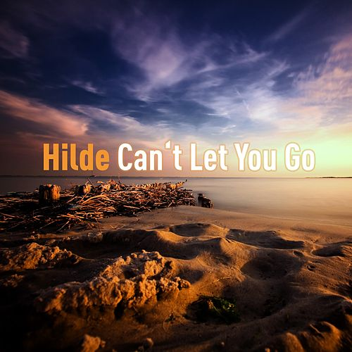 Can't Let You Go by Hilde