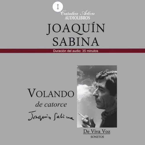 Volando de Catorce (Sonetos de Viva Voz) de Joaquín Sabina