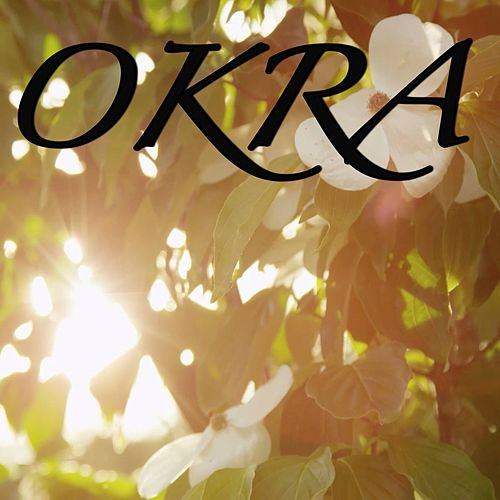 Okra / Tribute to Tyler The Creator by 2018 Dj Moodz
