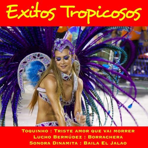 Exitos Tropicosos by Various Artists