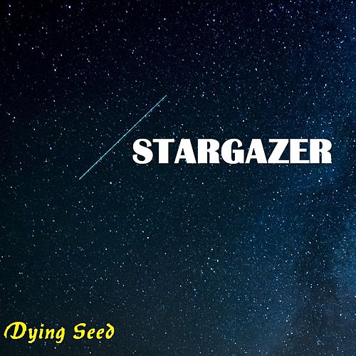Stargazer by Dying Seed