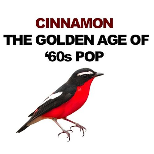 Cinnamon: The Golden Age of '60s Pop de Various Artists