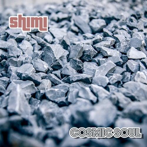 Cosmic Soul by Shimi