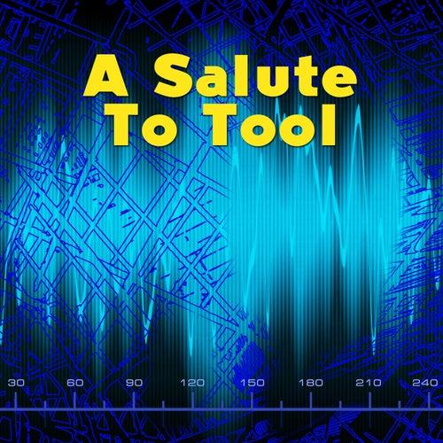A Salute To Tool de Various Artists