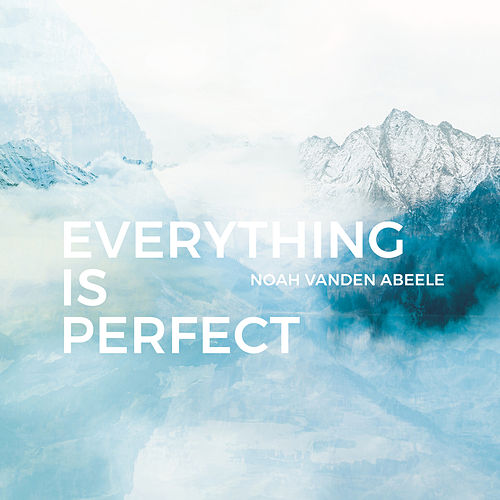 Everything is Perfect by Noah vanden Abeele