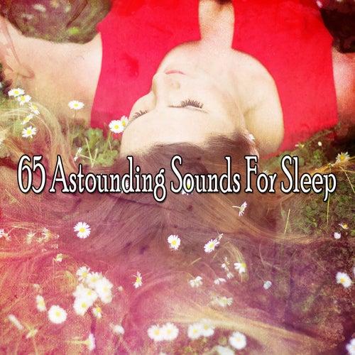65 Astounding Sounds For Sleep von Best Relaxing SPA Music