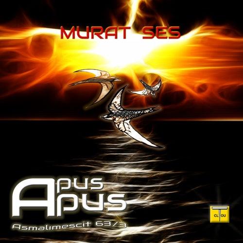 Apus Apus von Murat Ses