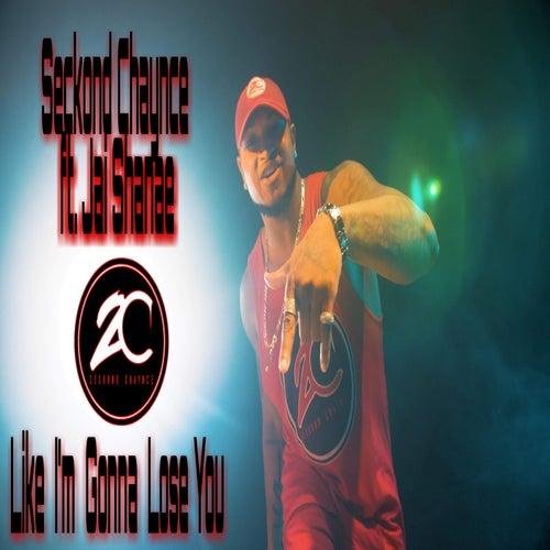 Like I'm Gonna Lose You by Seckond Chaynce