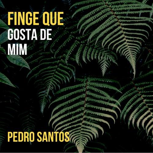 Finge Que Gosta de Mim by Pedro Santos