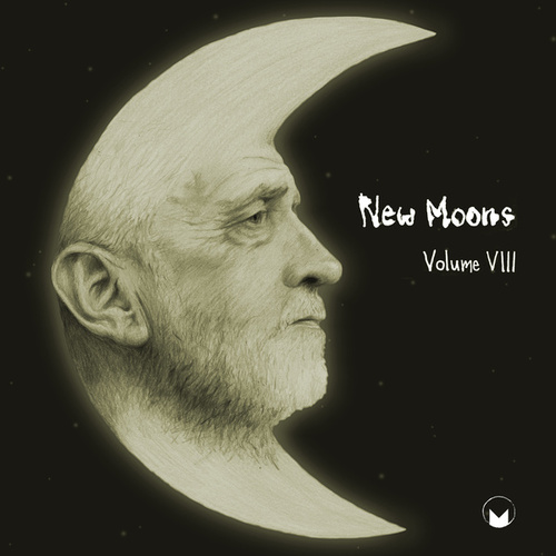 New Moons Vol. VIII by Various Artists