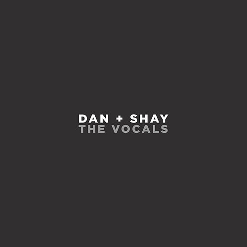 Dan + Shay (The Vocals) by Dan + Shay