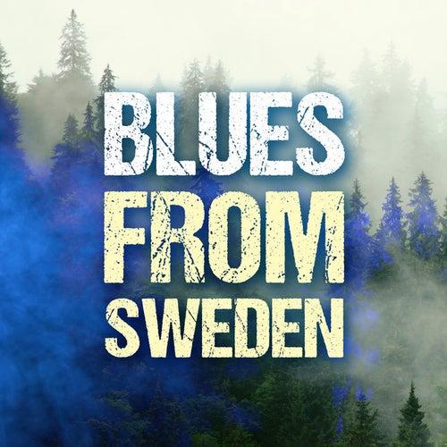 Blues from Sweden de Various Artists