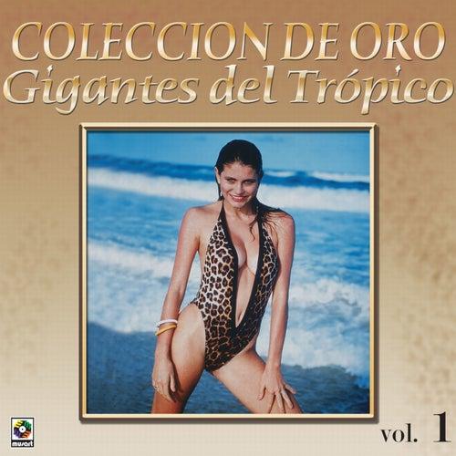 Colección De Oro: Gigantes Del Trópico, Vol. 1 de Various Artists