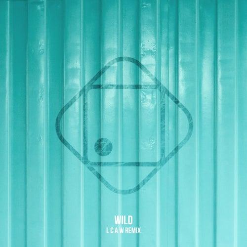 Wild (LCAW Remix) de Hugo Helmig