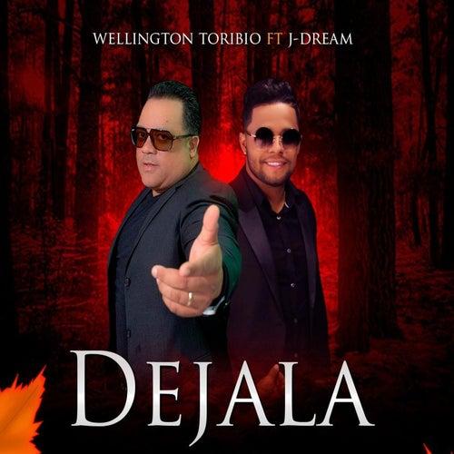 Dejala de Wellington Toribio