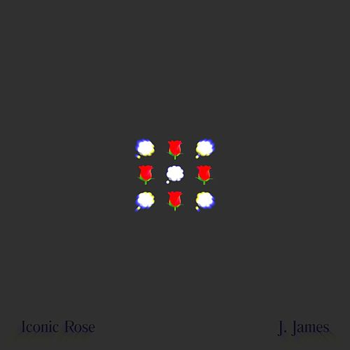 Iconic Rose by J. James