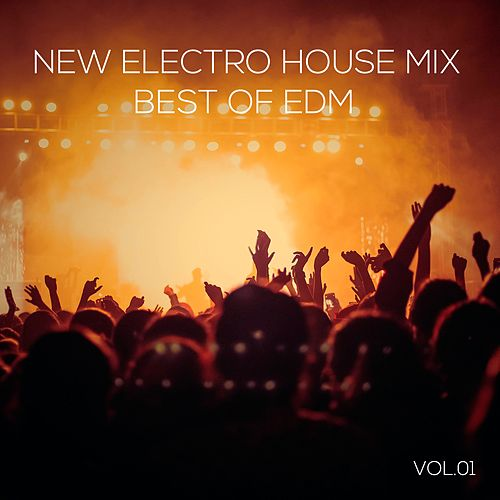New Electro House Mix Best of EDM, Vol. 01 by Various Artists