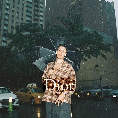 Dior 2001 von Rin