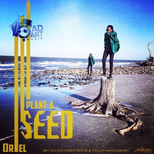 KraiGGi BaDArT presents: Plant A Seed (feat. ORieL) - Single by KraiGGi BaDArT