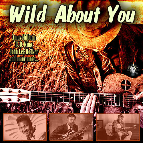 Wild About You by Various Artists