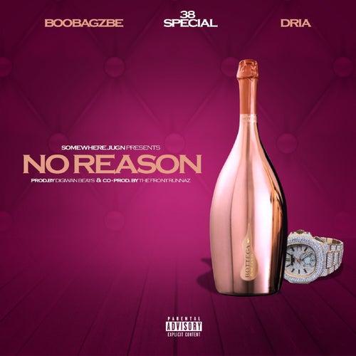 No Reason by Boobagzbe