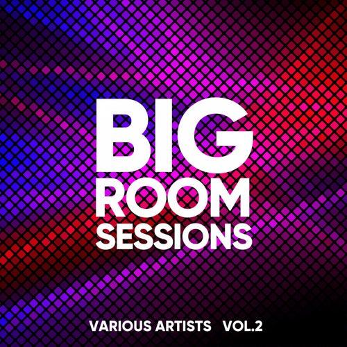 Big Room Sessions, Vol. 2 von Various Artists